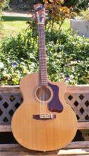 Mint Condition, Guild F-50CE Standard Cutaway Acoustic-Electric Guitar w/ Case